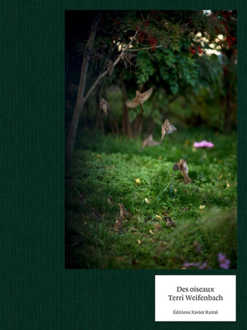 Terri Weifenbach : Des Oiseaux ☆☆☆☆☆